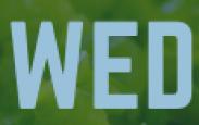 Wellness Wednesday, February 19, 2020